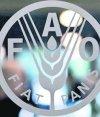 Sede FAO. Foto: Archivo El País