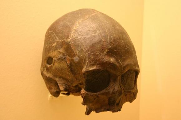 La investigación tiene lugar en Guinea Ecuatorial. Foto: Wikimedia Commons