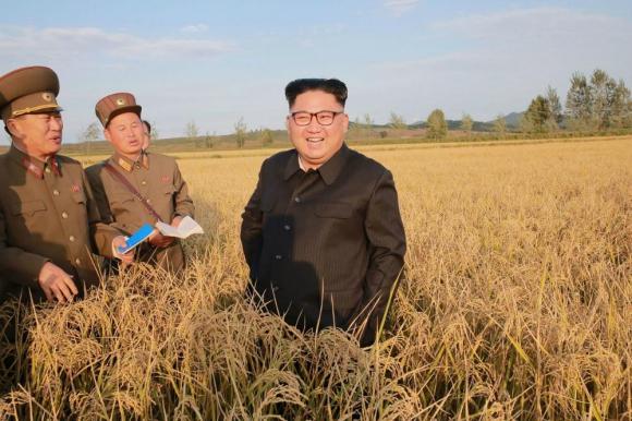 Corea dle Norte prepara un misil de largo alcance, informó un legislador ruso. Foto: KCNA vía AFP.
