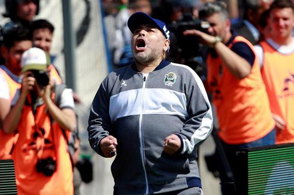 Así gritó Maradona el gol del empate de Gimnasia. Foto: EFE