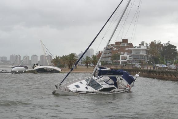 Embarcaciones en el Puerto de Punta del Este. Foto: Ricardo Figueredo