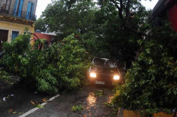 Destrozos por el temporal. Foto: Fernando Ponzetto