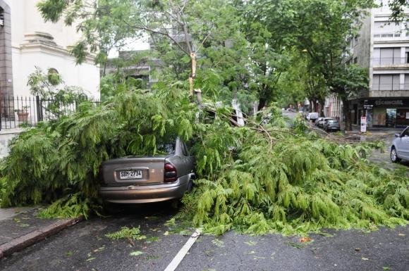 Destrozos por el temporal. Foto: Marcelo Bonjour