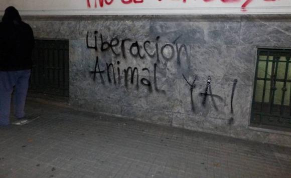 Vandalizaron ministerios, locales comerciales y Facultad de Ciencias Sociales. Foto: Coordinación Estudiantil AntiEspecista