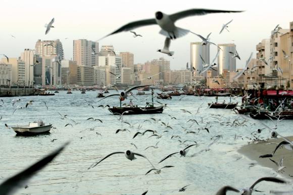 Khor Dubai. Foto AFP