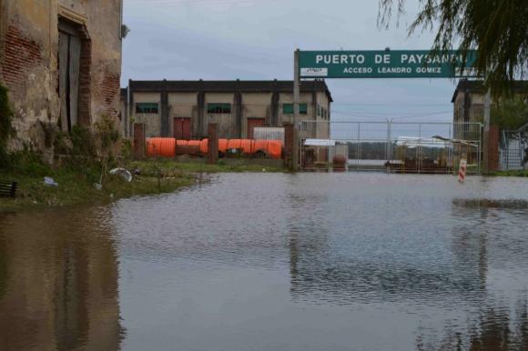 Crecida del río Uruguay frente a Paysandú. Foto: Daniel Rojas