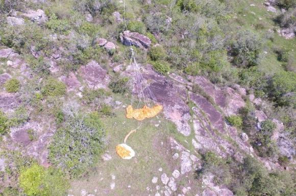 El globo de Google que cayó en Uruguay. Foto: Drone.UY