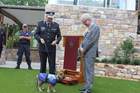 Gavel fue nombrado perro oficial vice-real. Foto: Twitter @QPSmedia