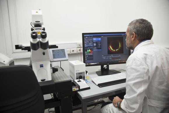 El investigador Flavio Zolessi trabaja con un microscopio de barrido láser con focal, una herramienta adquirida recientemente por el Pasteur. Foto: M. Castiñeiras