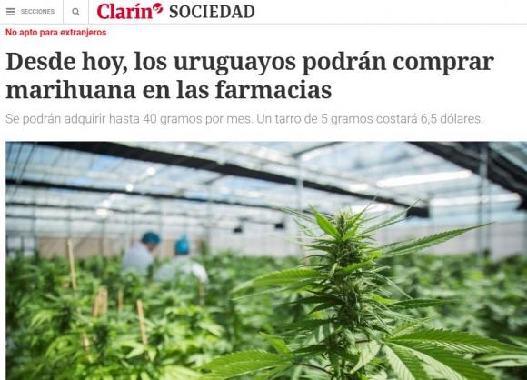 La marihuana legal de Uruguay en los medios del mundo. Foto: captura Clarín