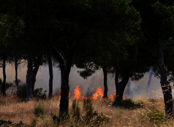 Incendio en España. Foto: AFP