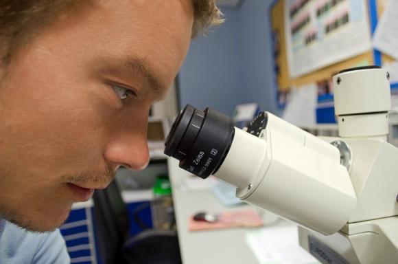 Científico mirando por el microscopio. Foto: Pixabay