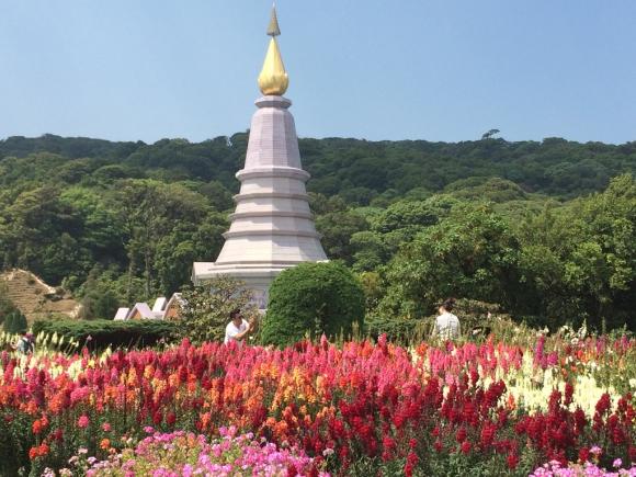 Los jardines de las pagodas del rey y la reina son de lo más hermosos del paseo. Foto: Déborah Friedmann