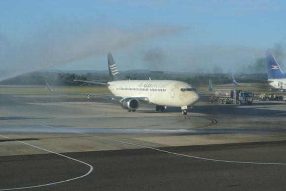 Alas U tras su primer vuelo. Foto: C. Figueredo