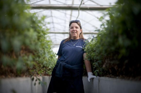 Mujeres que trabajan para la industria forestal en Uruguay. Foto: Fernando Ponzetto