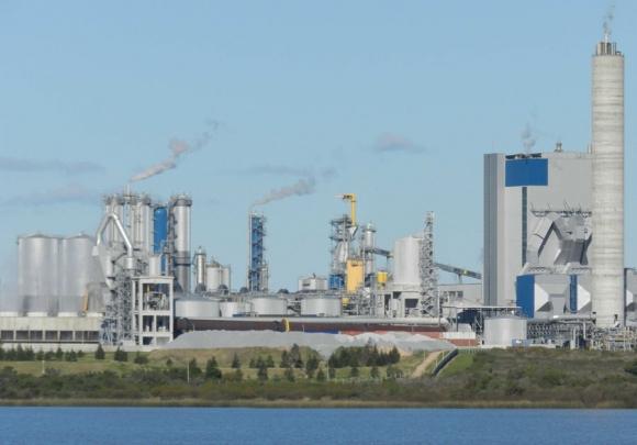 UPM: desde 2007 opera su planta en Fray Bentos. Foto: D. Rojas