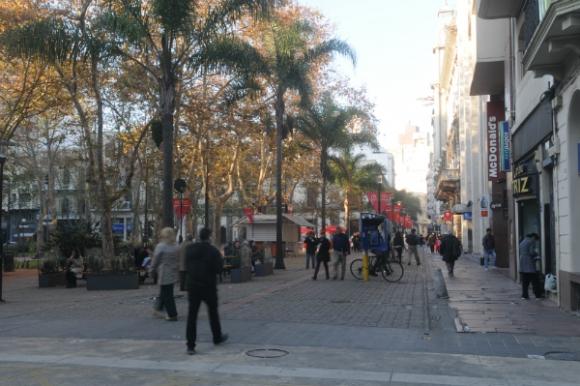 Las nuevas palmeras de Sarandí: discutidas (Foto: Archivo El País)