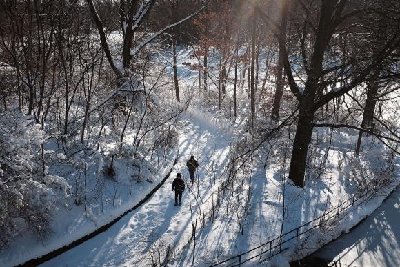 El día después de Snowzilla en Brooklyn (Nueva York). Foto: AFP.