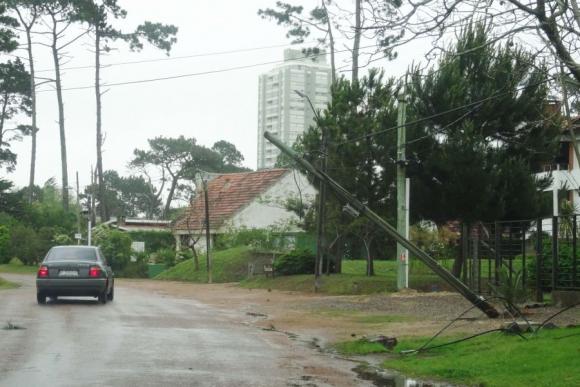 Columna caída en Punta del Este. Foto: Ricardo Figueredo