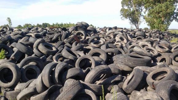 Miles de neumáticos en desuso colapsan depósitos - 07/02/2016 - EL PAÍS  Uruguay
