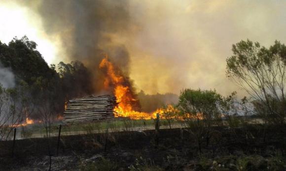 Incendio en Paso del Rey, Lavalleja. Foto: @camboue