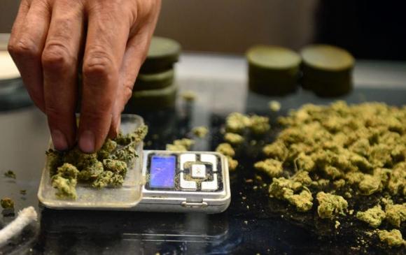 Marihuana medicinal. Foto: AFP
