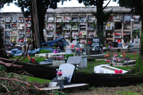 Daños en el cementerio de Dolores. Foto: Fernando Ponzetto.