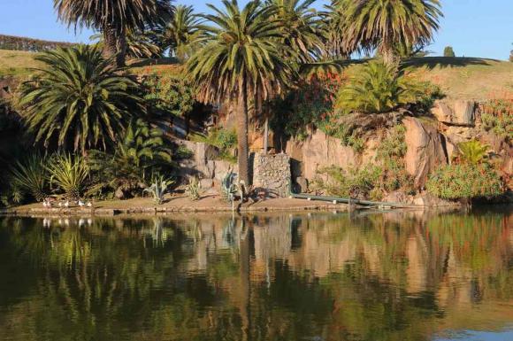 Lago en las Canteras del Parque Rodó. Foto: Archivo EL PAÍS