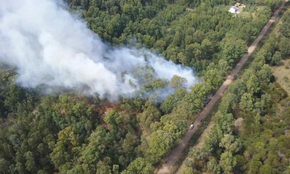 Incendio en Laguna del Sauce. Foto: Dirección Nacional de Bomberos