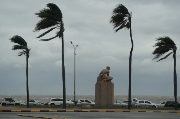Fuertes vientos azotan Montevideo. Foto: Fernando Ponzetto