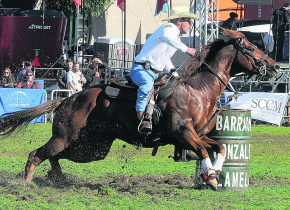 Ayer los caballos Cuarto de Milla coparon la pista. Foto: Ariel Colmegna