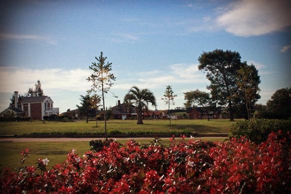 Colinas de Carrasco, un barrio privado en contacto con la naturaleza a minutos de Montevideo.