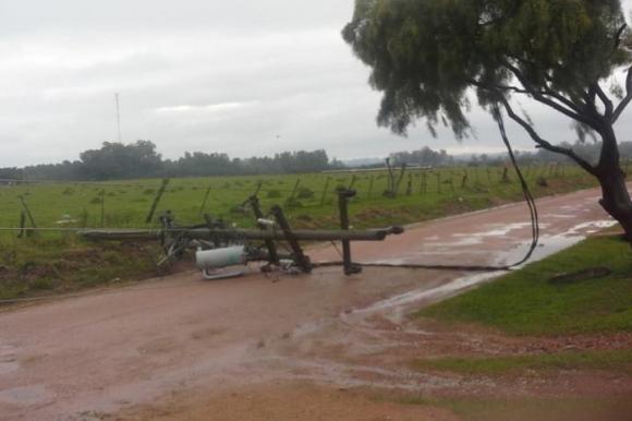 Columnas caídas en Río Branco. Foto: Néstor Araújo.
