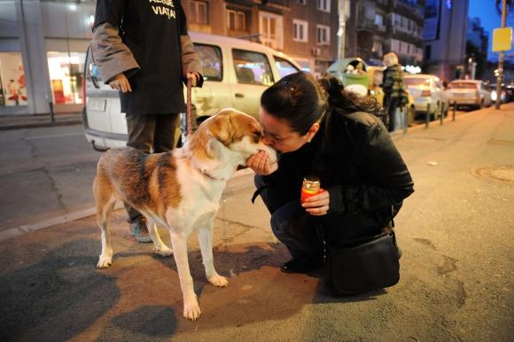 Mujer besando a un perro. Foto: AFP