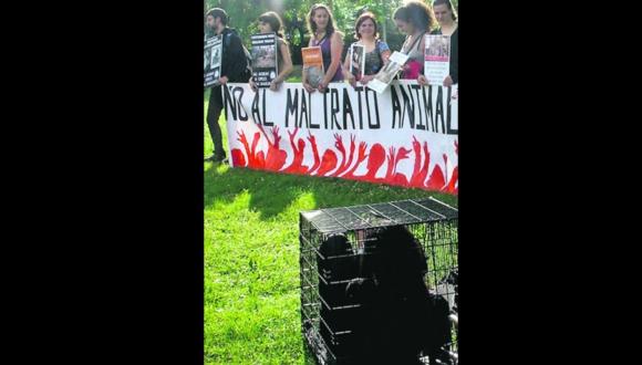 Protesta contra el maltrato animal. Foto: Archivo El País