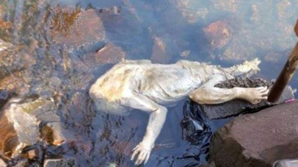 La extraña criatura que apareció muerta en Paraguay. Foto: Captura de pantalla