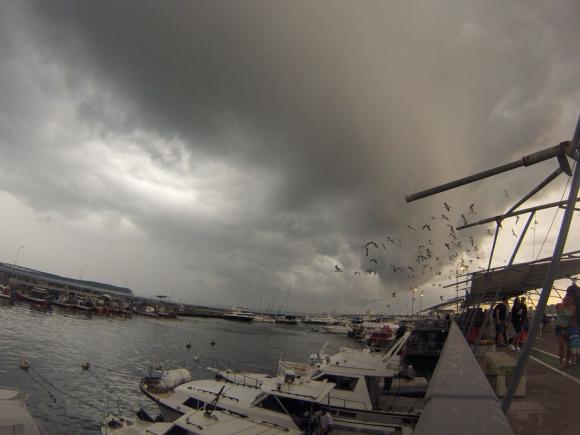 Decenas de turistas provenientes de dos cruceros arribaron al puerto de Punta del Este. Foto:  Juan M. Gari