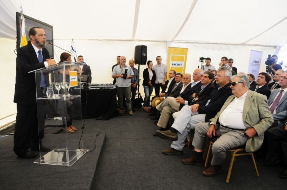 Alberto Díaz, presidente de la Administración Nacional de Puertos. Foto: Marcelo Bonjour.
