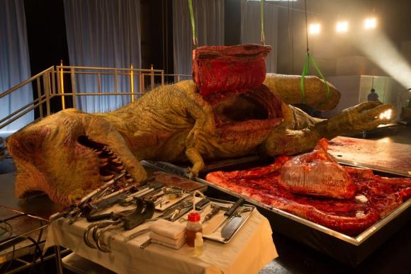El Tiranosaurio abierto luego que le sacaron los intestinos. Foto: Nat Geo