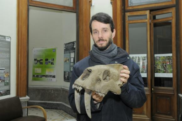 Andrés Rinderknecht con un cráneo de tigre dientes de sable