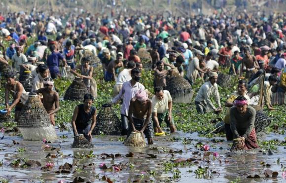 Indios participan de una pesca comunal durante la celebración de Bhogali Bihu, en el lago Goroimari. Bhogali Bihu es un festival de cosecha celebrado en el noreste de India. Foto: AFP.