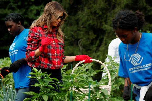 La huerta es un legado de la ex primera dama, Michelle Obama Foto: Reuters