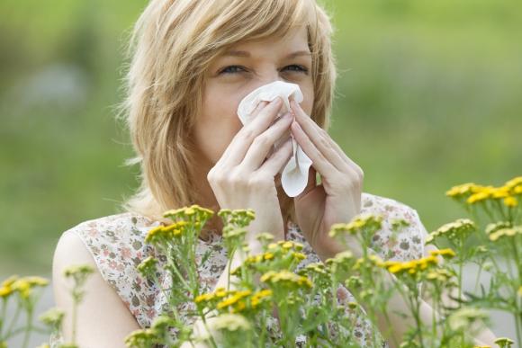 Las alergias de la primavera
