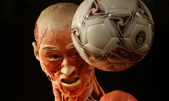 La idea fue del doctor Von Hagens. Foto: AFP