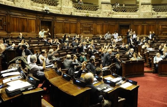 Los legisladores quieren contar con asesoramiento jurídico antes de decidir. Foto: D. Borrelli