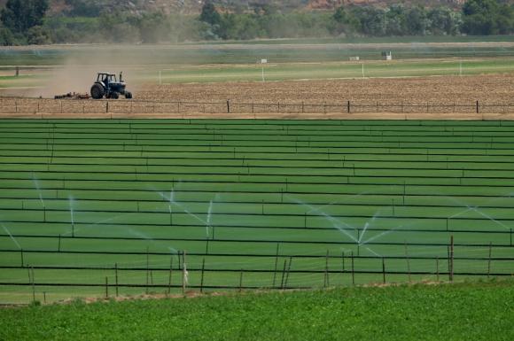 La nueva Ley de Riego y sus repercusiones ambientales suscitan oposición. Foto: Reuters