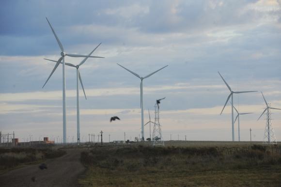Eólica: parte de la caída de inversiones recomendadas de debe a menores proyectos de renovables. Foto: D. Borrelli