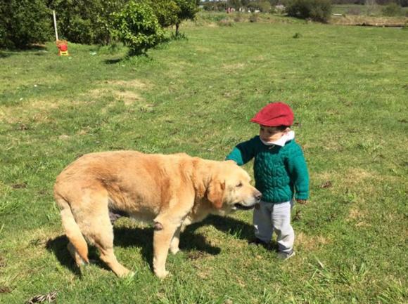 Con su perro tras haber sido dado de alta. Foto: Facebook Un corazón para Ezzio