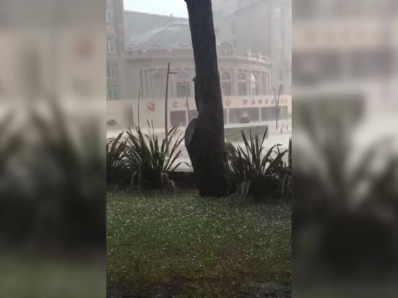 Granizo en Montevideo. Foto: Captura de video