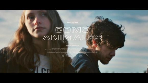 Como animales
